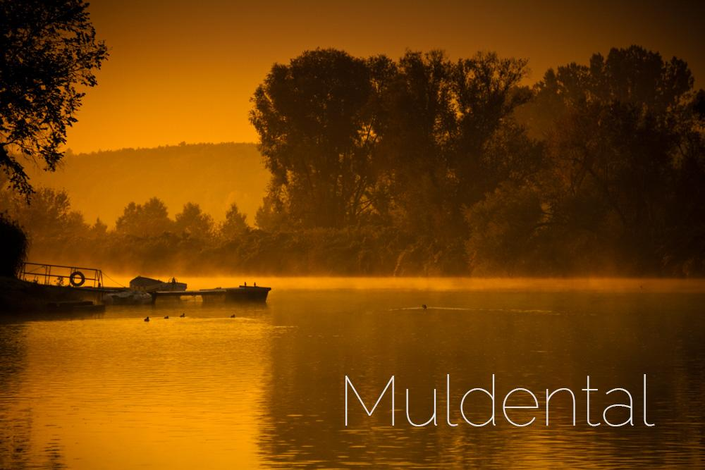 muldental2